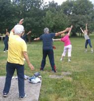 Anziani ginnastica parco estate motoria attività 190