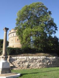 Frassino Maggiore dei Giardini della Rotonda 200x266