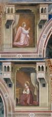Affreschi della Cappella degli Scrovegni 230