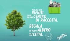 """progetto """"Operazione più alberi""""  230 x 135"""
