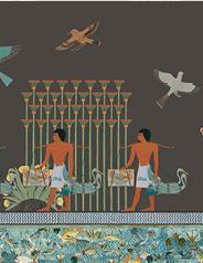 """Ciclo di incontri """"Lezioni patavine. Lungo il Nilo"""""""