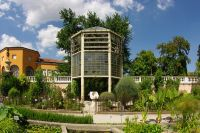 Serra della palma di Goethe