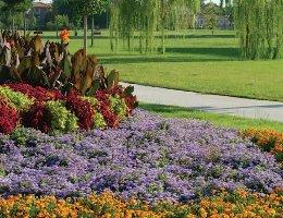 Parco via Venezia