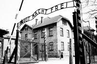 """Mostra """"Il testimone: Auschwitz e Primo Levi"""""""