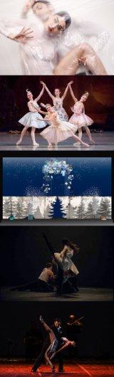 """Rassegna di danza """"Evoluzioni"""" - anno 2018"""