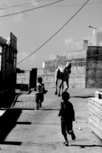 "Mostra ""Le strade dell'Apartheid"""