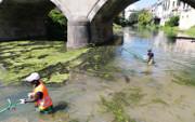 """Progetto """"Valorizziamo i canali cittadini"""" Piovego Ponte Molino"""