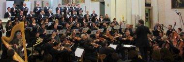 61° ciclo di concerti del Centro organistico padovano 380