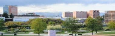 Verde ambiente città vista paesaggio scorcio Padova palazzi alberi parco parchi 380 ant