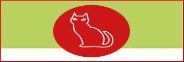 Giornata mondiale del gatto 380 ant