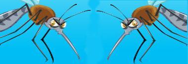 Zanzare zanzara antilarvali larvicidi larvicida 380 ant