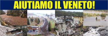 Emergenza maltempo alberi temporale Veneto ottobre 2018 380 ant